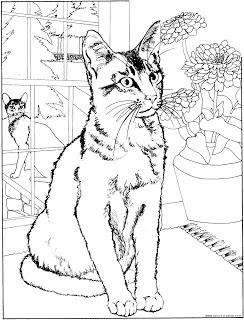 desenhos para imprimir e colorir de gato