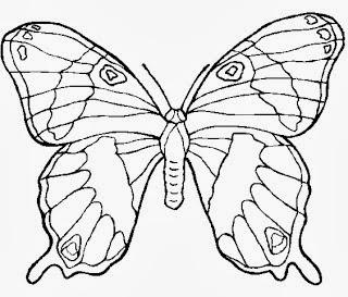desenhos para imprimir e colorir de Borboleta