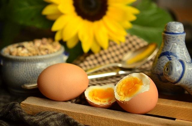 Dieta do ovo 3 quilos em 3 dias