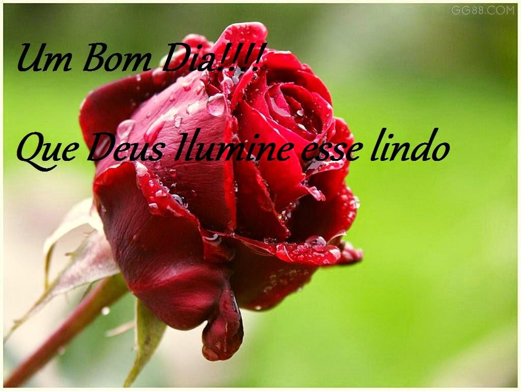 Imagens De Bom Dia Para Whatsapp: Imagens Com Mensagem De Bom Dia Para Whatsapp E Facebook